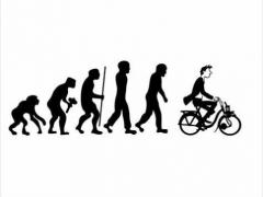 solex_evolutie