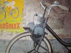 losolex